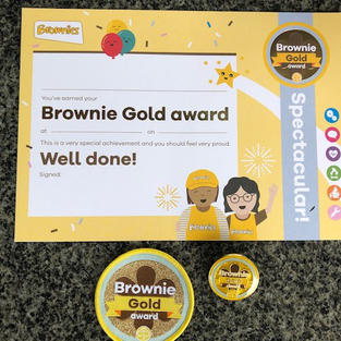 Brownie Gold Award
