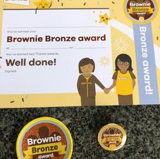Brownie/Guide/Ranger Bronze Award