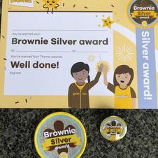 Brownie/Guide/Ranger Silver Award