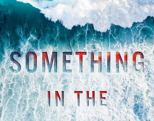 Something In The Water by Catherine Steadman (available to pre-order on Amazon. Released July 26th 2