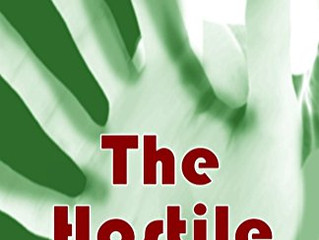 The Hostile: Book One of The Hostile series by Joy Mutter