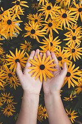 art-beautiful-bright-1697912.jpg