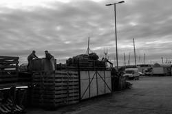 Hafen Campbeltown