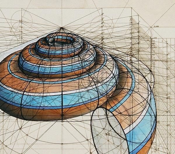 measured shell  (1000x880).jpg