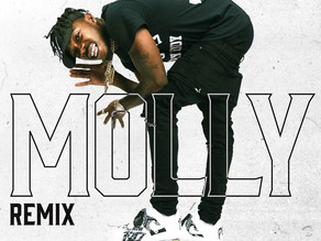 Foogiano Ft. DaBaby - MOLLY (Remix)