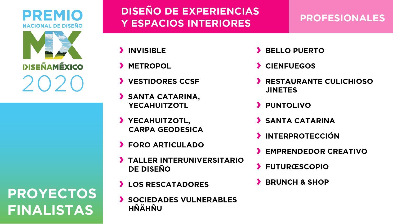 EXPERIENCIAS / PROFESIONALES