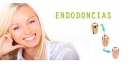 slider-endodoncia3
