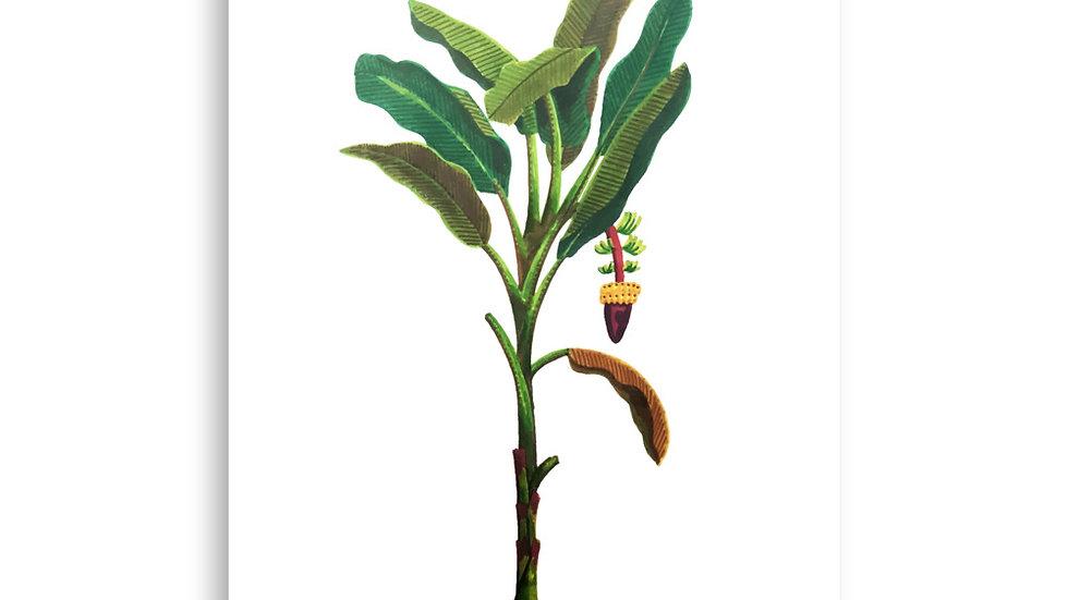 """""""Banana Tree"""" - Poster"""