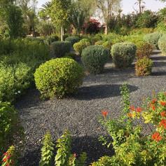 expert jardin