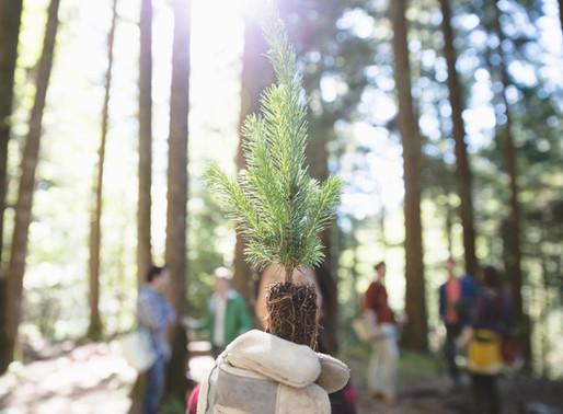 Nuestro secreto mejor guardado, los beneficios del contacto con la naturaleza