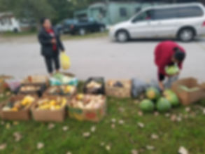 CJ Food Distribution.jpg