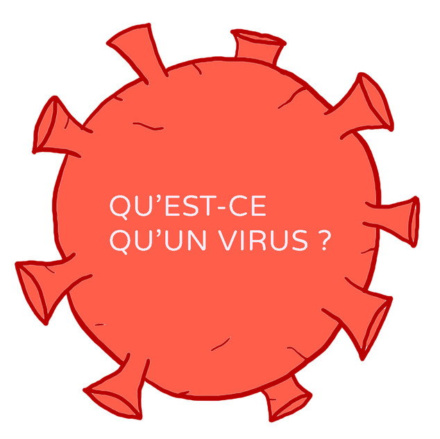 Qu'est-ce qu'un virus ?