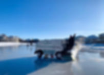 lake .jpg