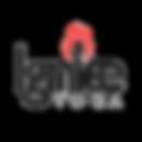 Transparent Background Logo