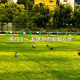 店舗、Online Shop お休みのお知らせ(2021.6.9)