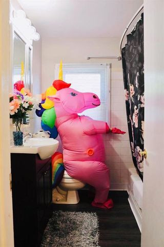 dinosaur unicorn house