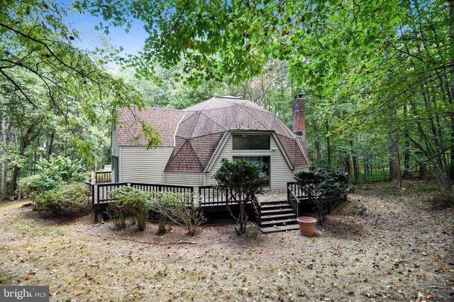 Vienna, VA geodisic dome