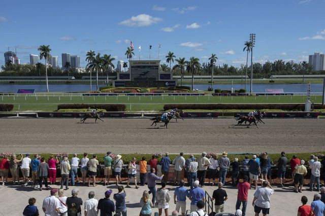 Hallandale Beach is famous for Gulfstream Park, a racetrack and casino.