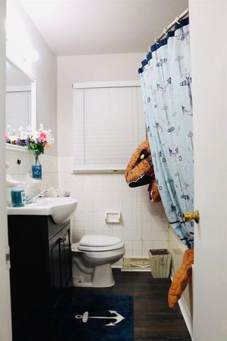 dinosaur unicorn house