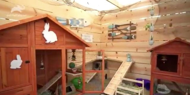 Antonio Balletore Animal Cribs