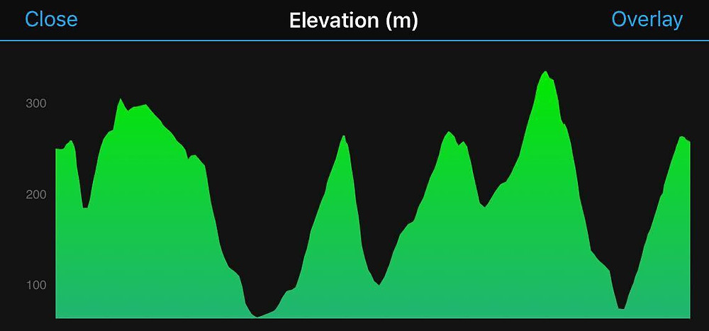 Run Venture Rollercoaster elevation