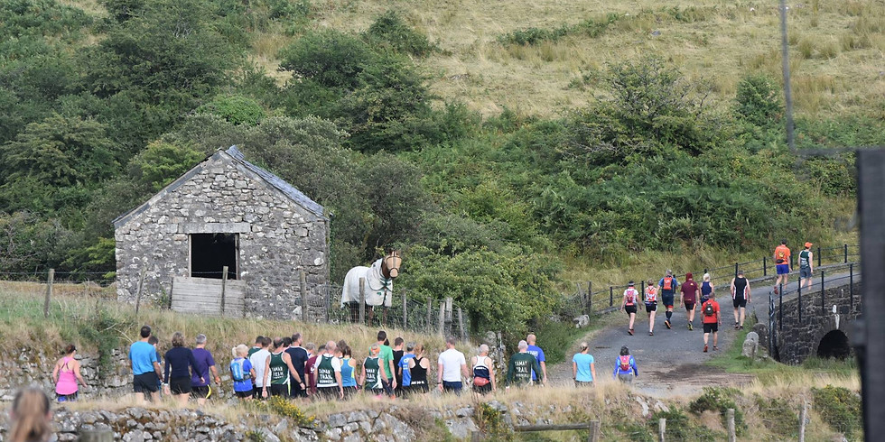 Neolith Fell Race