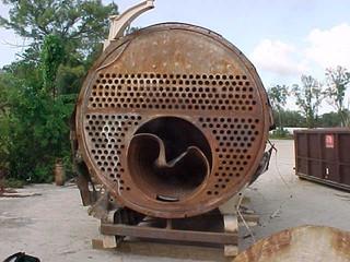 Wasps Inside a Boiler?