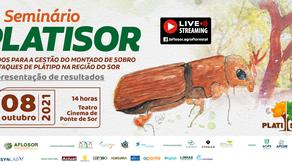 SEMINÁRIO PLATISOR TRANSFORMA-SE NUM EVENTO HÍBRIDO