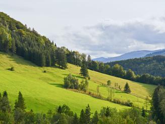 Landschaft_5221.jpg