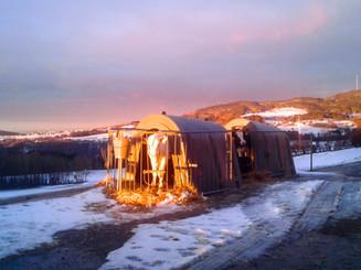 Kalb_Winter.jpg