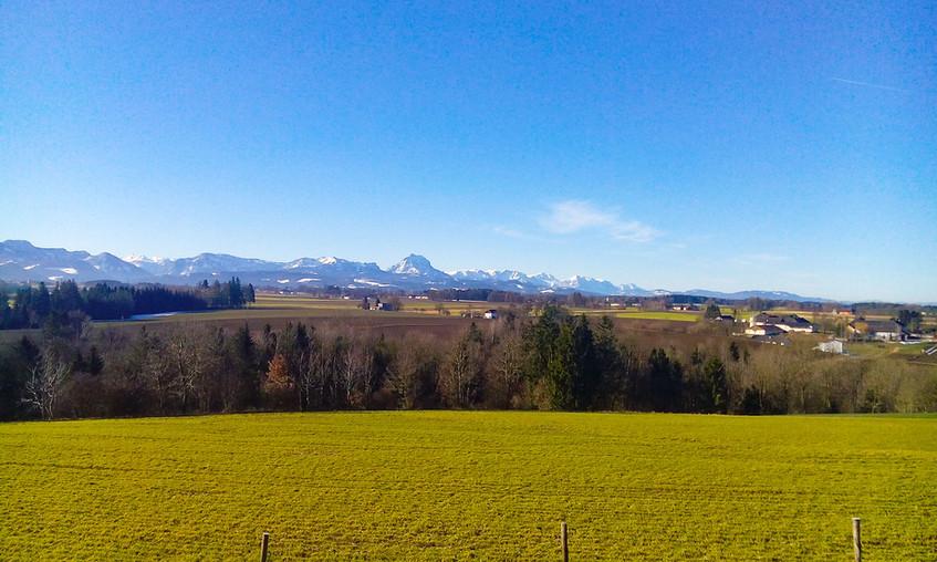 Panorame_Frühling_095259_1.jpg