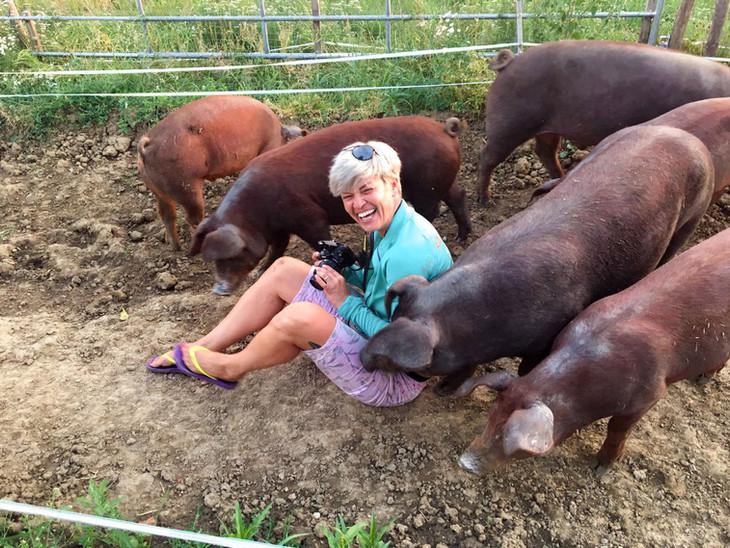 Unter-Schweinen_WA0003.jpg