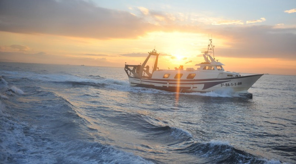 pesca10-800x445.jpg