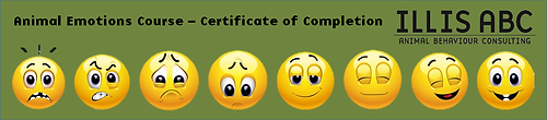 Animal emotions course completion banner