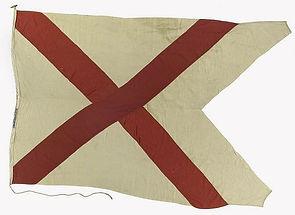 BISN House Flag