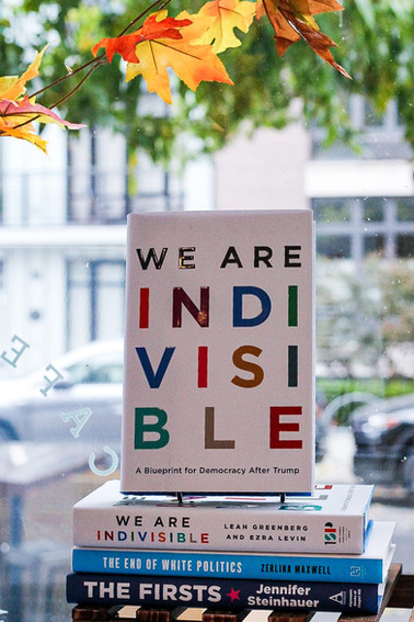we are indivisible.jpg