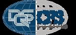 DQS CFS Logo RGB.png