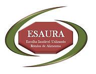 Logo ESAURA.jpg