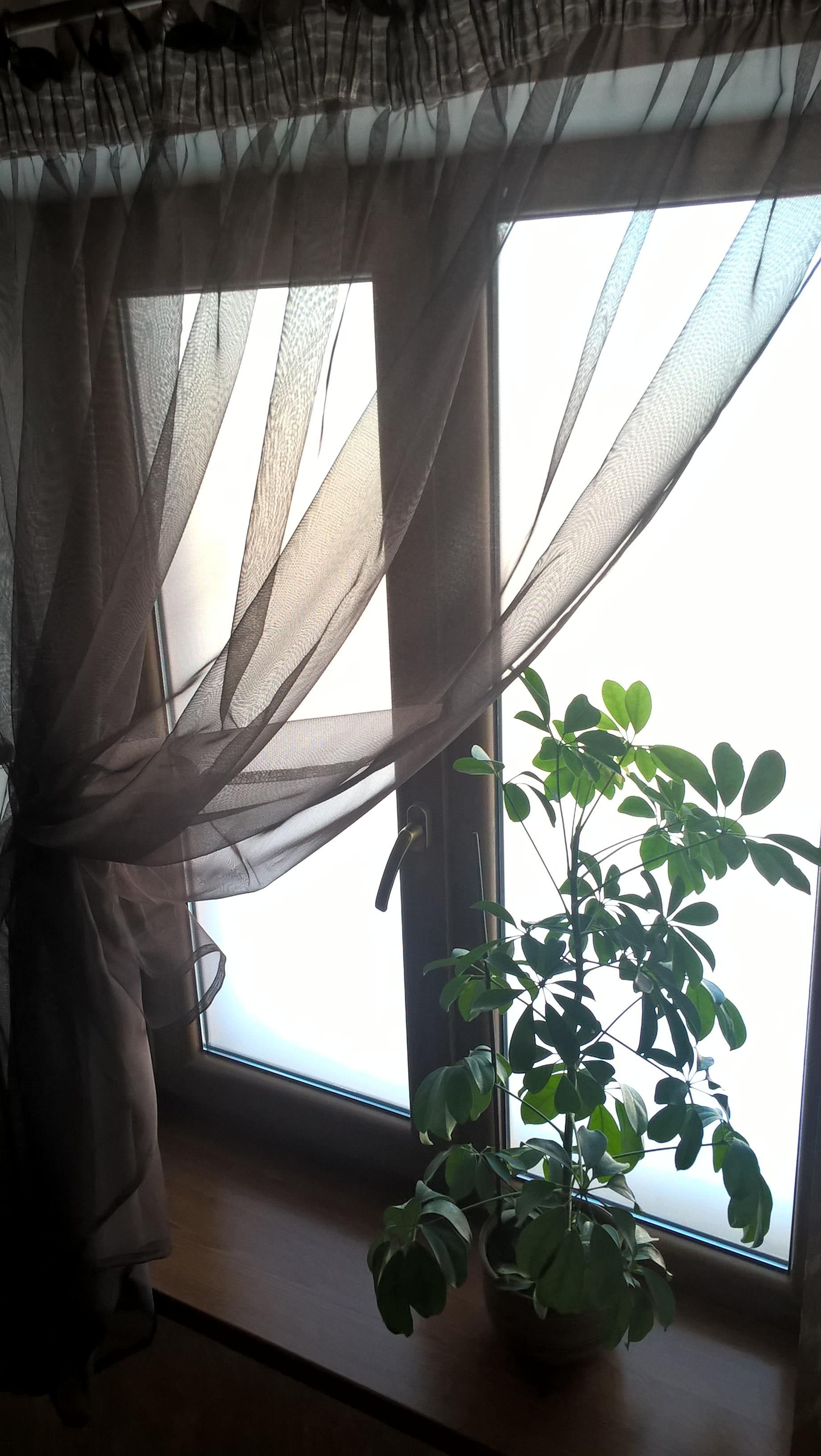 Окно на лестнице.