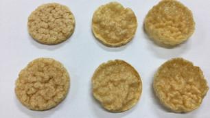 Lentil Pellet Test (Cake & Chip types)