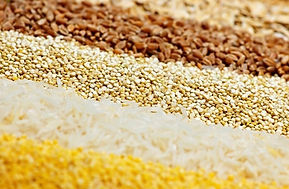 Material de máquinas de pastel de arroz