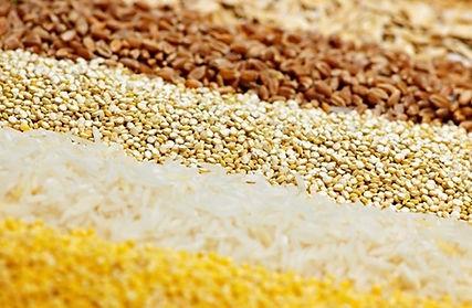 Material del producto de la torta de arroz