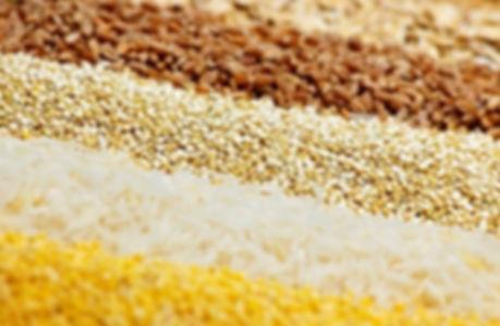 rice cake machine materials