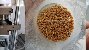 Test SYP4506 by 100% Wheat
