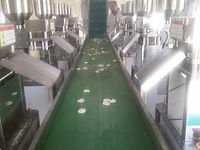 triangle popped chips production line