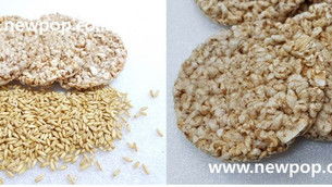 Test of 100% Oat cake by SYP