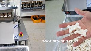 Test of SYP3045 Bone shape model