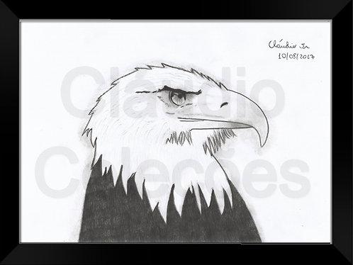 Quadro - Águia - Desenho a Mão-livre