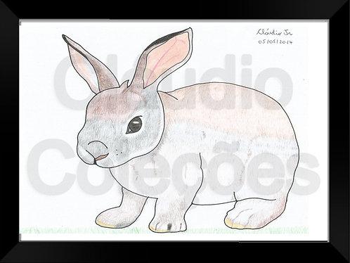Quadro - Coelho - Desenho a Mão-livre