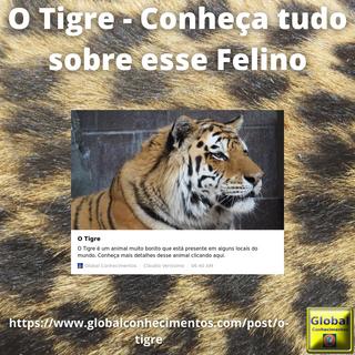 O Tigre.png